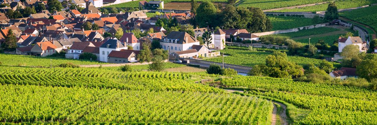 excellence-vtc-bordeaux-wine tours 2